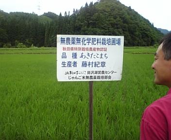 無農薬栽培じゃんご米