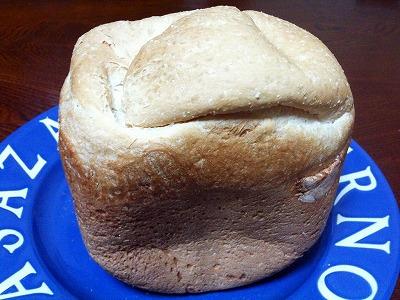 今日のGOパン 第一号